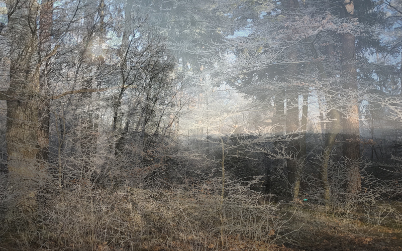 Lightscape-Winter-Wiese-Heuberger-Tor-800x500Px