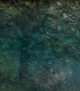 Baum-an-der-Quelle-90x80-cm